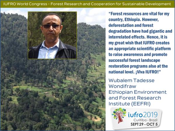 Wubalem-Tadesse-IUFRO2019-testimonial